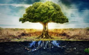 86737__living-tree_p