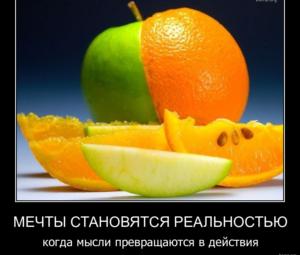 584305-2012-04-03-09-00-20-bomz-org-demotivator_mechtiy_stanovyatsya_realnostyu_kogda_miysli_prevrashayutsya_v_deyistviya
